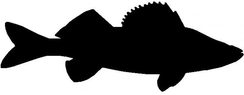 walleye-icon